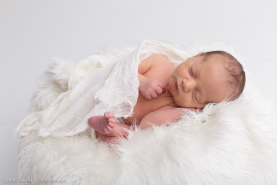Perth studio newborn Photographer 022