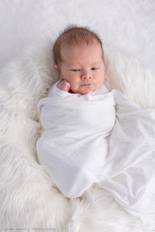 newborn photography Perth mobile studio 006