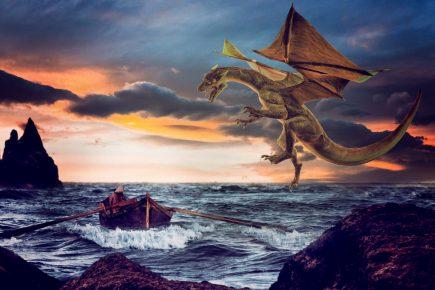 dragon boat web