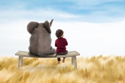 elephant seat web