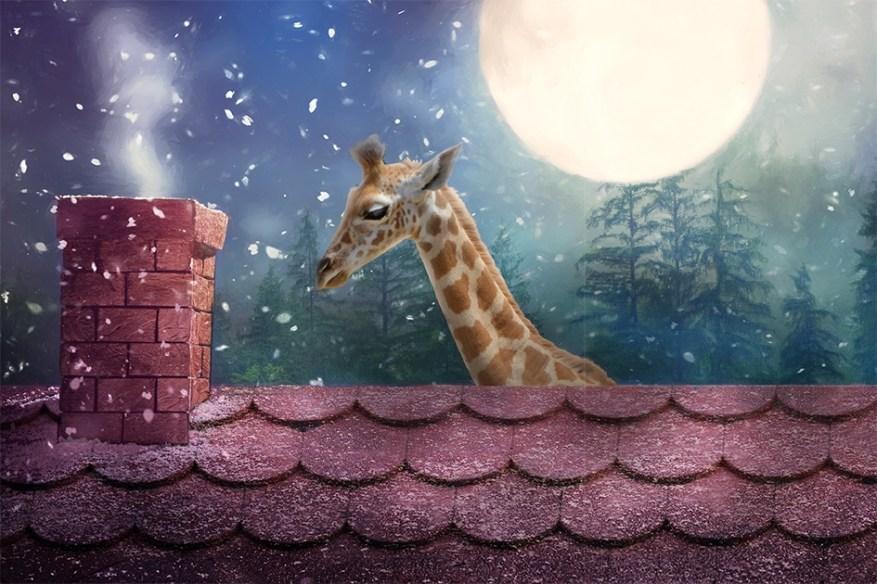 giraffe roof web