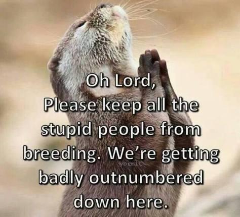 Prairie dog prayer