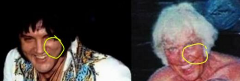 Mike Mcfarlin comparison of Jesse and Elvis