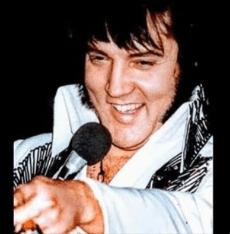 Steve's Elvis 1