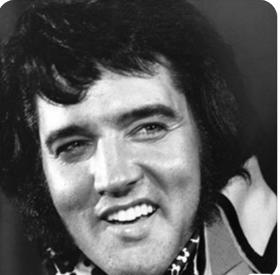 Steve's Elvis 5