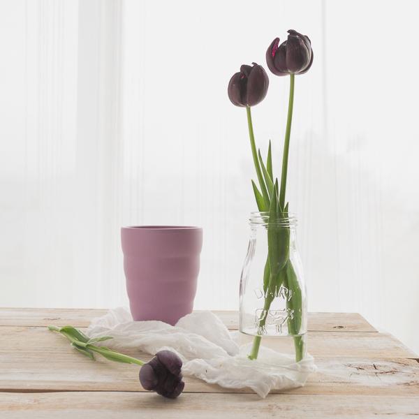 2016-04-22 Tulips-1-4