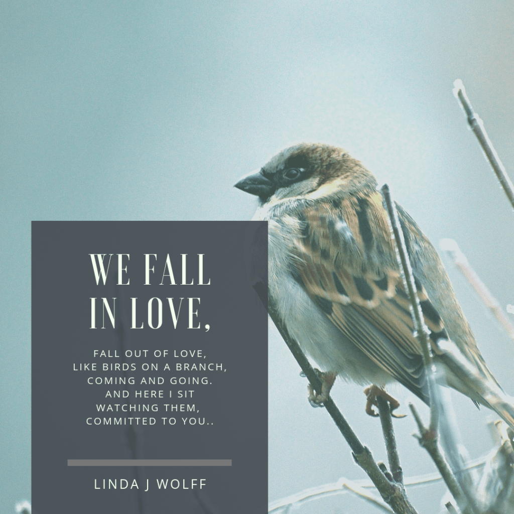 we fall in love, fall out of love, like birds on a branch, coming and going. And here i sit watching them, grounded in you..