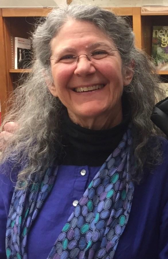 Ellen Meeropol, political thriller writer