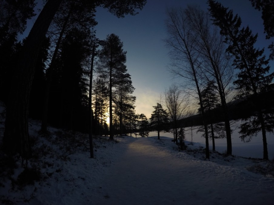 Hiking trail at Sognsvann, Oslo. January 2016.