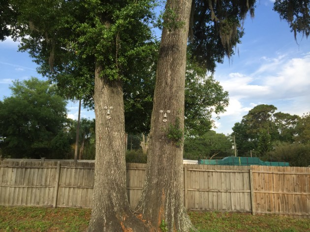 Trees With Faces