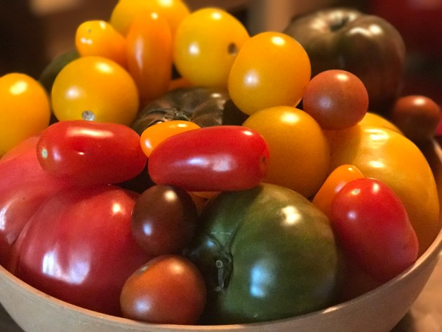 Local Grown Florida Heirloom Tomatoes
