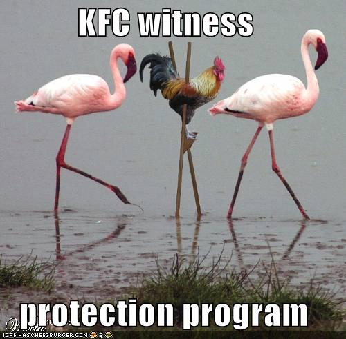 funny-pictures-kfc-chicken-stilts-flamingos1.jpg