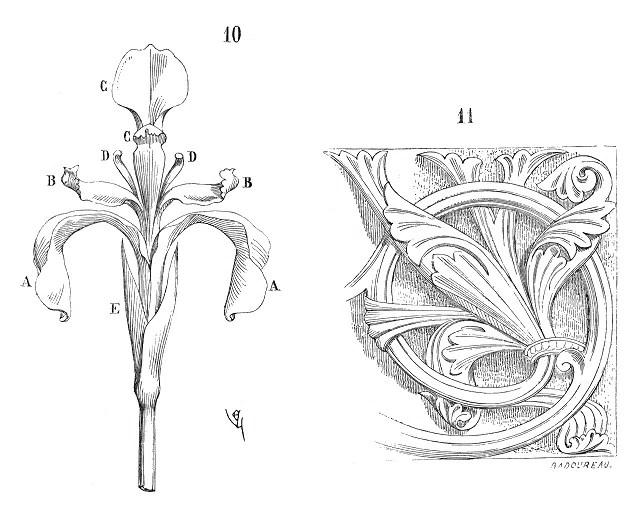 Fleur.iris.2 Met Gala