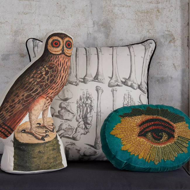 John Derian Halloween for Target pillows owl bones eyeball