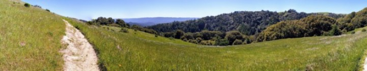 Silicon Valley矽谷戶外活動-自然篇2