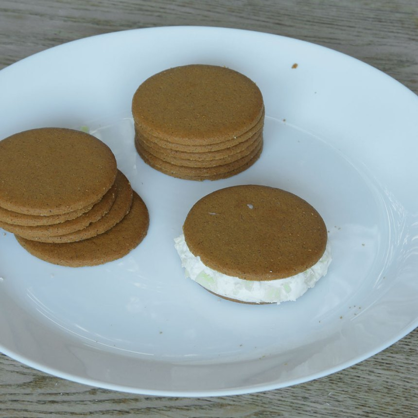 3. Bred ut glass på en pepparkaka, ca 1 cm tjockt lager. Lägg på en pepparkaka som lock. Jämna till kanterna.