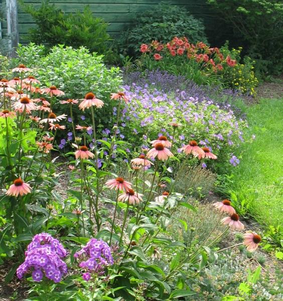 garden renovation The LAND Line