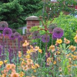 parbold garden design 1h