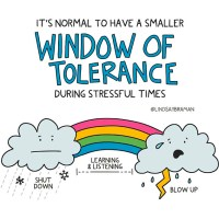 The Impact of Stress on Emotional Window of Tolerance