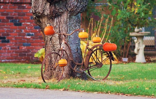 Pumpkin Bike