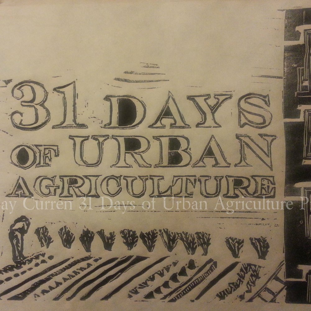 Many faces of Urban Agriculture
