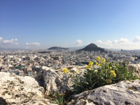 A view from the top of the Acropolis