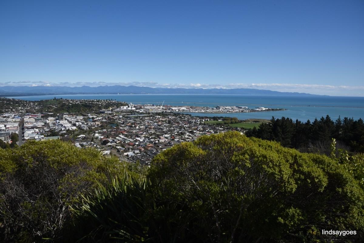 Zealand Nelson Lindsay