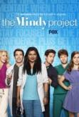 My friend Cole recommended this show to me and I love it. Mindy Kaling is so funny.
