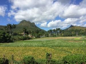 Farm, Cienfuegos