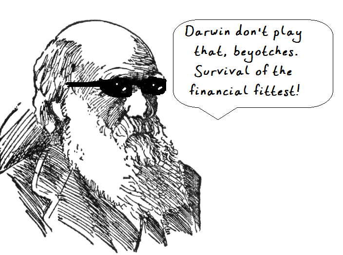 Ask Darwin: the answer to all your financial questions
