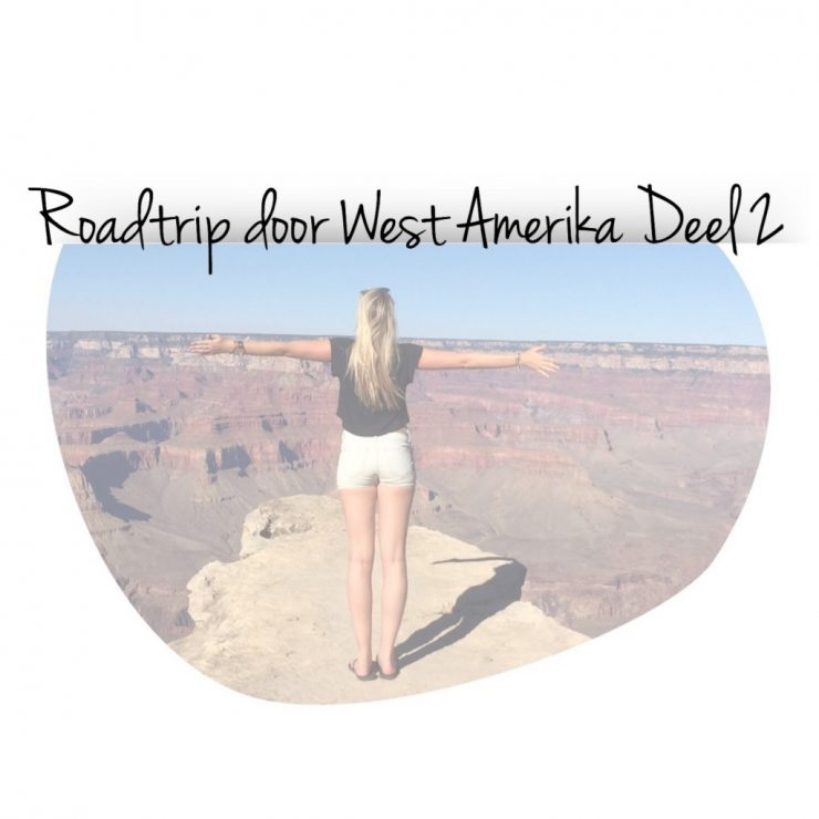 Roadtrip door West Amerika