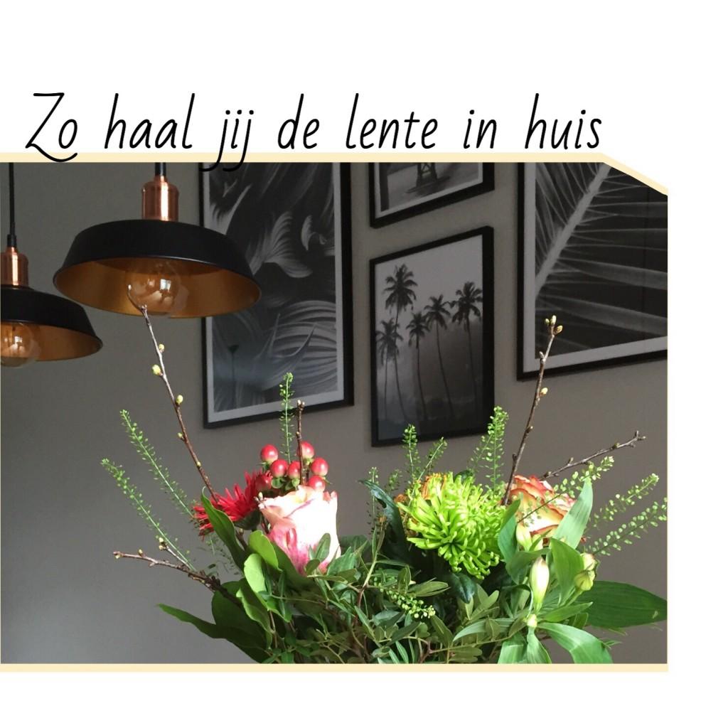 http://lindseybeljaars.nl/2018/02/zo-haal-jij-de-lente-in-huis/