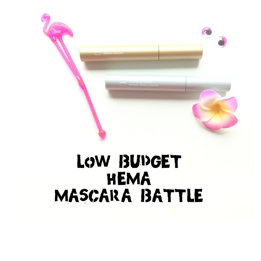 Low Budget HEMA Mascara Battle