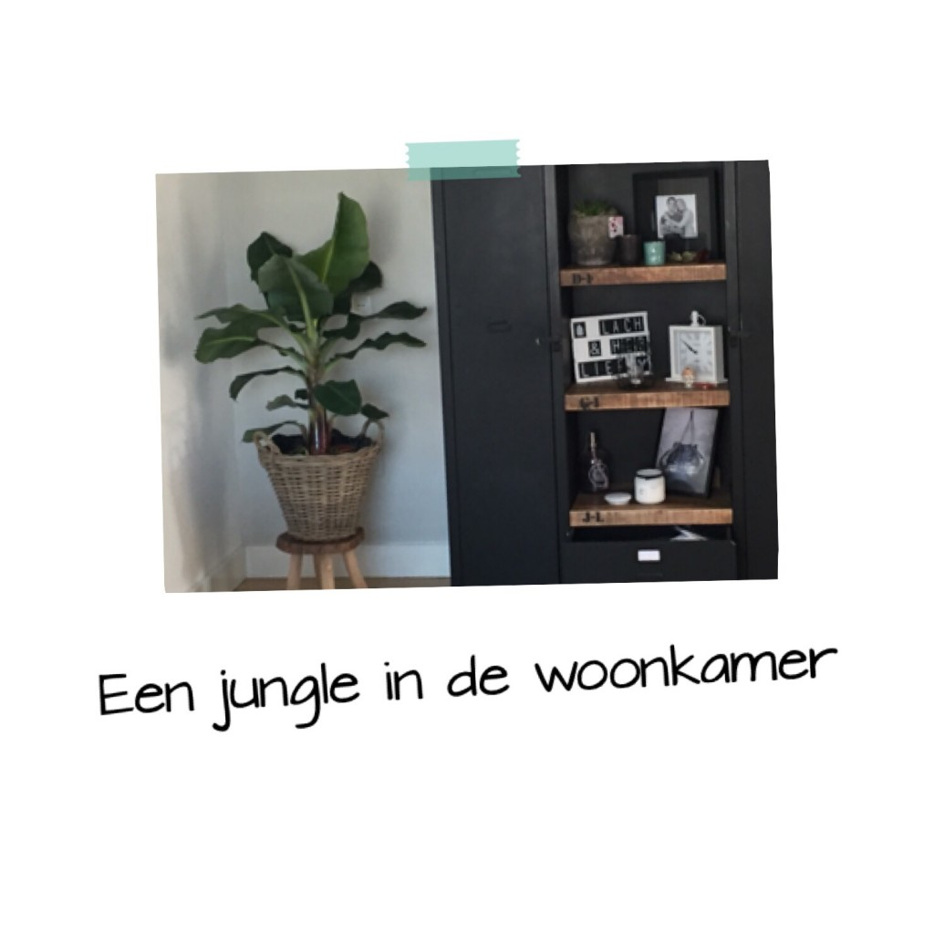 Een jungle in de woonkamer