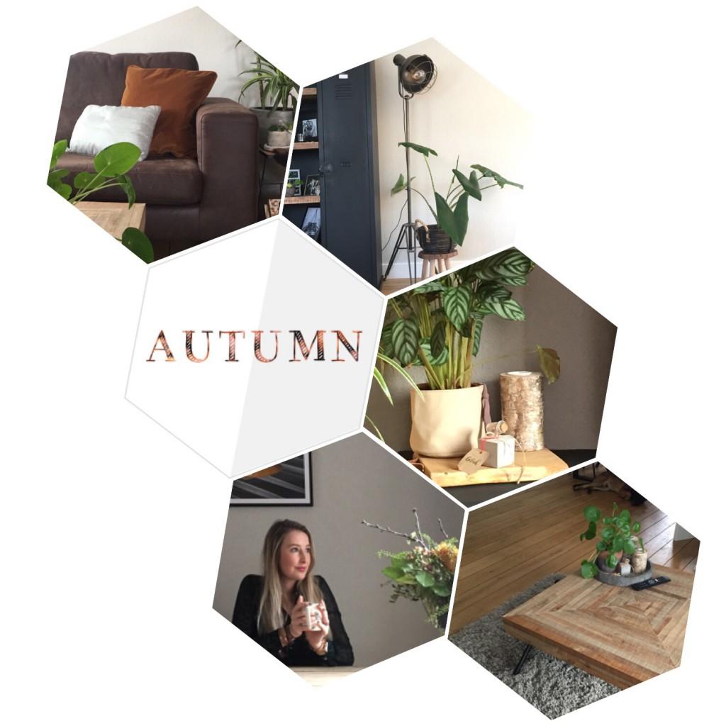 Haal de herfst in huis met deze 5 items
