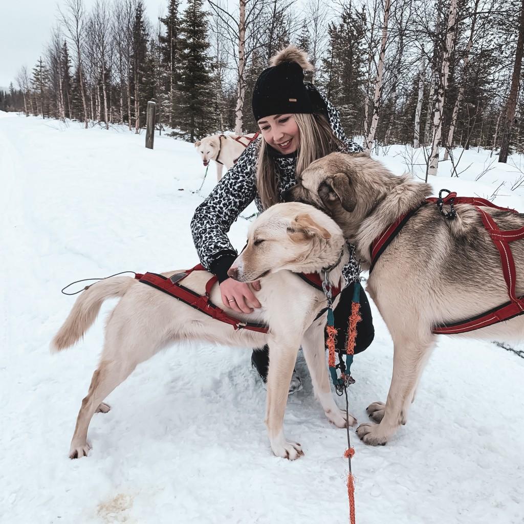 Trip in Fins Lapland Deel 3