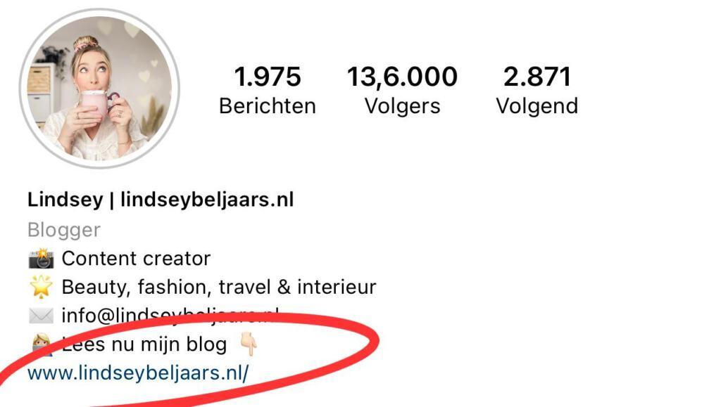 Begrippenlijst van Instagram