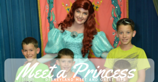Secrets to meet a princess at Disneyland