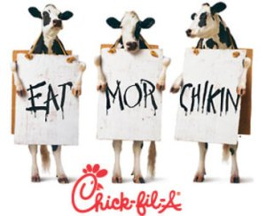 chickfila_cows