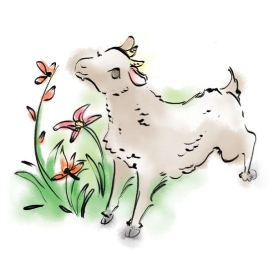 zodiacbookmark_sheep_600x600