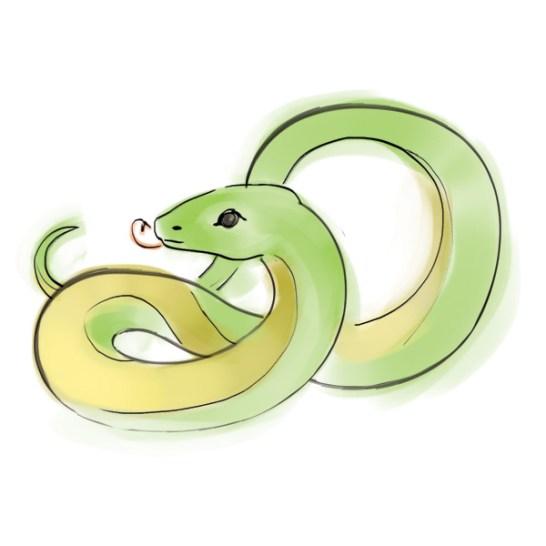 zodiacbookmark_snake_600x600