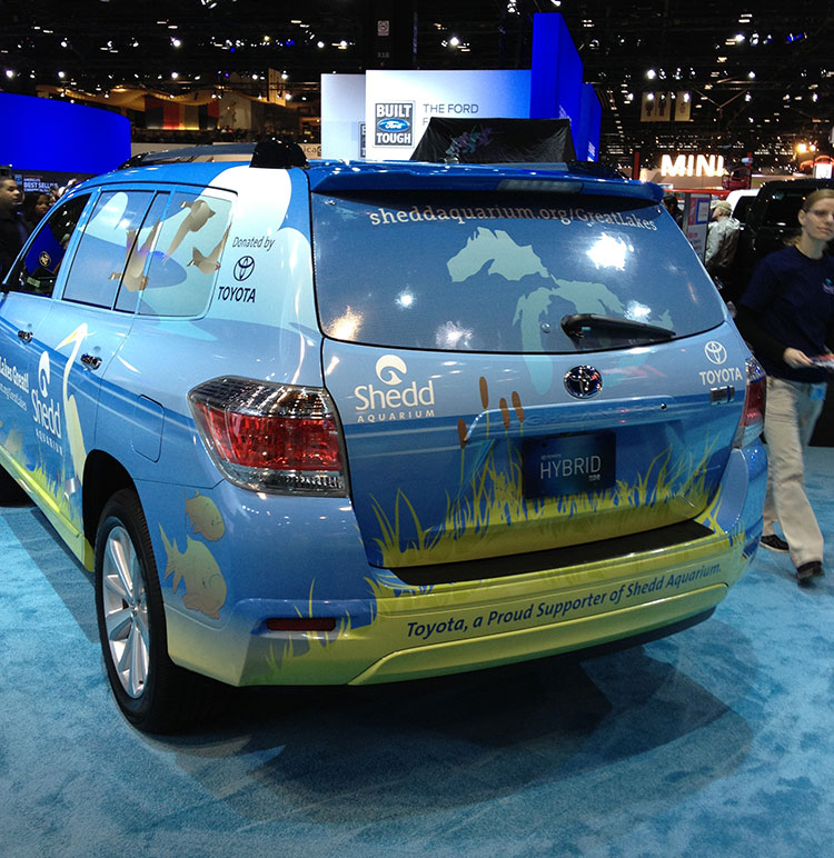 The back of a Toyota SUV, with an illustration of the Great Lakes on the back awindow and cattails and other marshy grasses on the bumper.