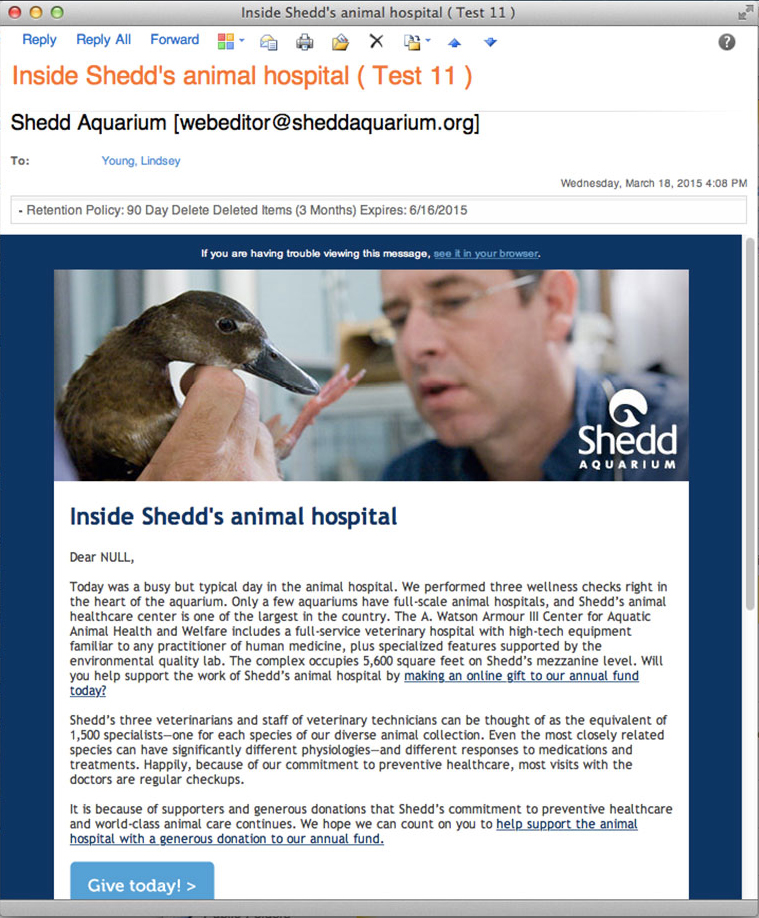 An email with the headline 'Inside Shedd's animal hospital'. The header image for the email features a duck being examined by a Shedd Aquarium veterinarian.