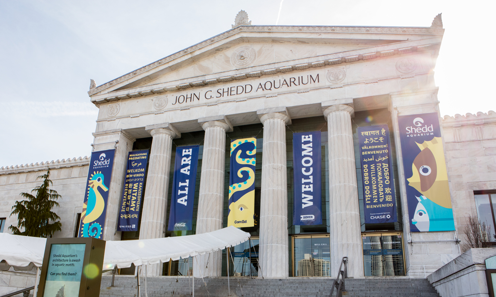 A photo of Shedd Aquarium's historic grecian style facade with banners hanging in between its columns reading 'All Are Welcome'. Stylized geometric illustrations of an octopus, a seahorse, and two fish frame the message.