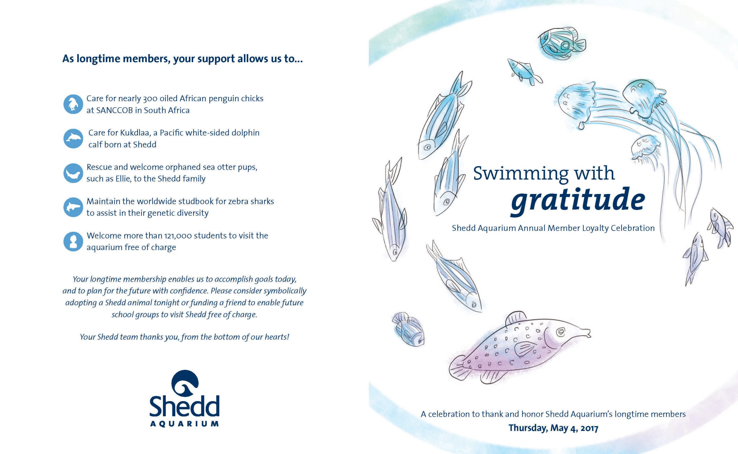 A brochure cover and back cover shown flat. On the cover is the title 'Swimming with gratitude' surrounded by fishes and jellies drawn in a sketchy style and colored in with what looks like chalk. On the left is more information about the program.