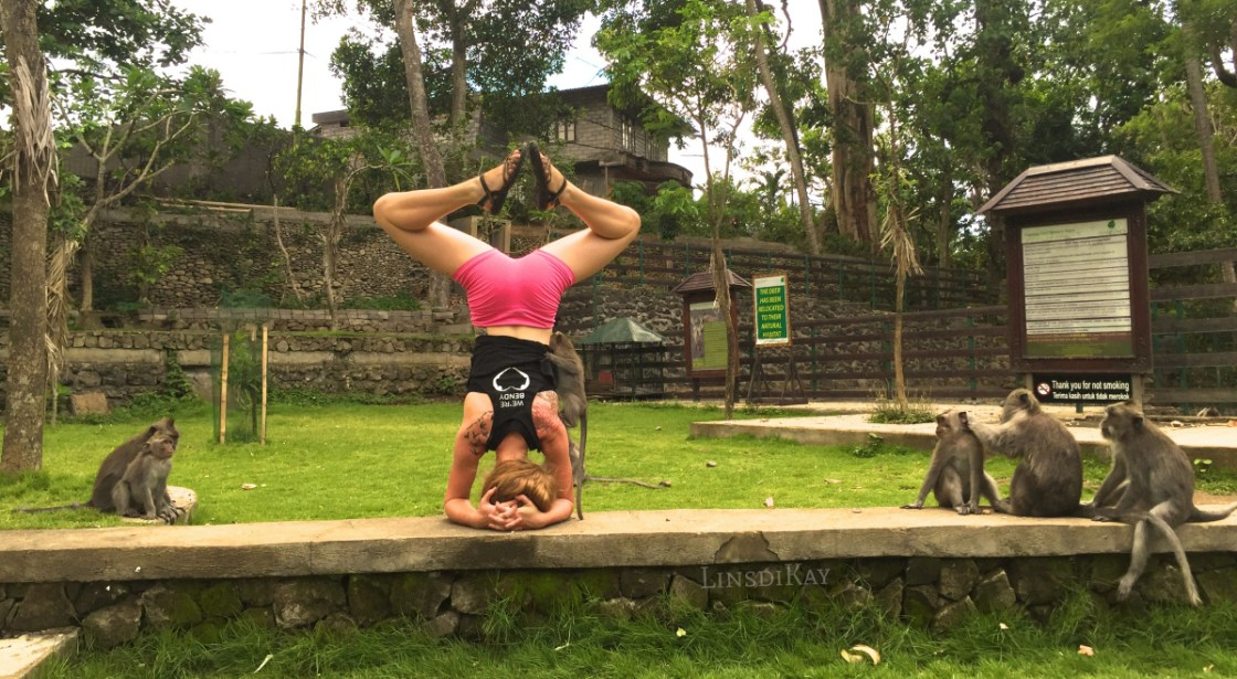 lindsikay bali travel what i learned what i loved what i avoided indonesia monkey forest ubud