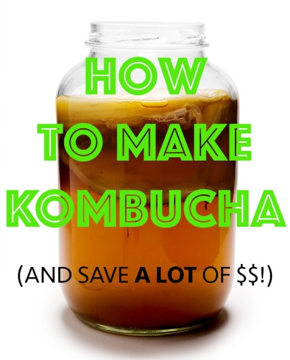 how to make kombucha at home health benefits of kombucha
