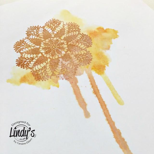 lindysdoily