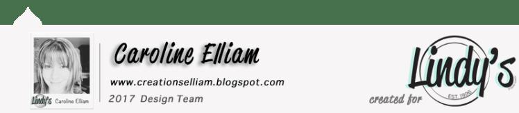 Caroline Elliam LSG DT Blog Post Footer 2017