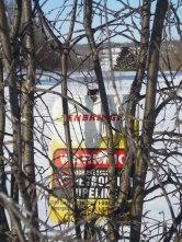 Hidden Sign in Tree